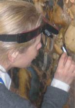 Image of tutor Marie-Christine Livage